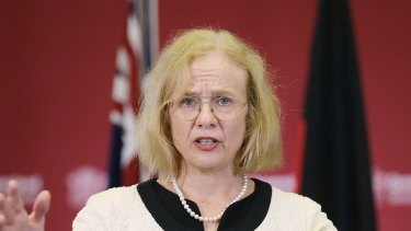 Queensland Chief Health Officer Jeannette Young says people in border areas should have a plan for if they aren't allowed to freely cross the border any more.
