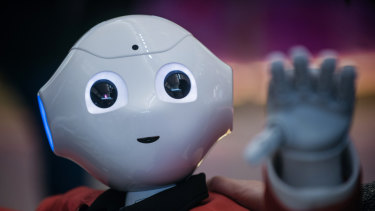 Timmy, a SoftBank Group Corp.'s Pepper humanoid robot.