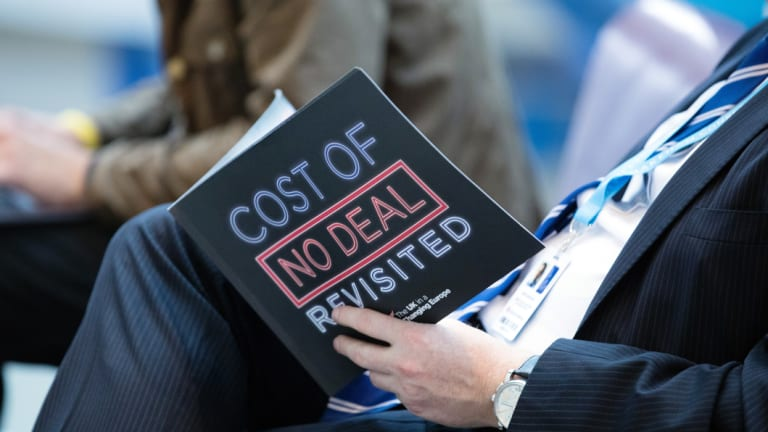 A delegate reads a pro-Brexit document during the Conservative Party annual conference in Birmingham.
