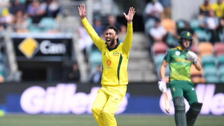 Overturned: Australia's Glenn Maxwell successfully appeals for the wicket of South Africa's David Miller, only to have the decision reversed on review during the third One-Day International match at Blundstone Arena in Hobart.