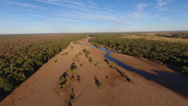 The Fitzroy River in WA's Kimberley region.