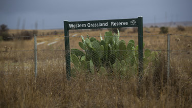 Part of the grassland reserve created from 2009 but never completed as promised.