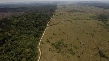 A deforested area near Novo Progresso in Brazil's northern state of Para.