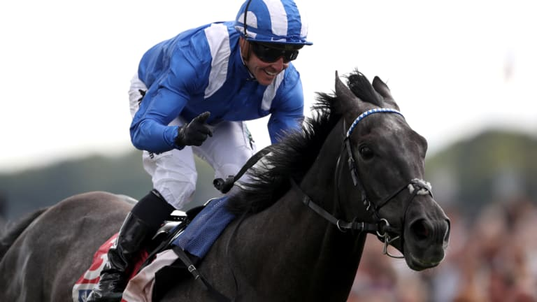 Salute: Crowley wins the Ebor Handicap aboard Muntahaa in August. The pair will team up again in Tuesaday's Melbourne Cup.