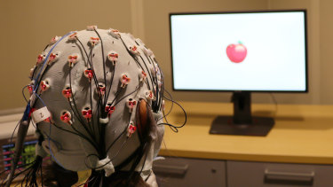 A cap that administers electrical stimulation and monitors brain waves for a visual working memory test at Boston University.