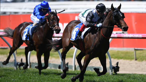 Racing network melbourne cup sweep prizes