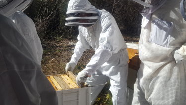 The Urban Beehive keepers