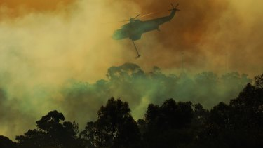 A helicopter drops water on the fire front at Barden Ridge, Sydney.