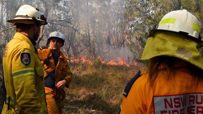 Captain Craig Byrne (centre) from the Grays Point Rural Fire Service and his crew monitor a fire in bushland in Menai on Sunday.