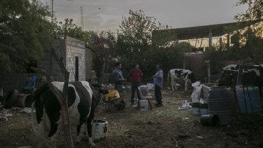 From left: Juan Antonio Arellano Vasquez, Isaias Sandoval and Antonio Perez Gonzalez at a friend's home in La Victoria, Mexico, June 1, 2018. The men, factory workers, plan to vote for Andrés Manuel López Obrador in the July 1 presidential election.
