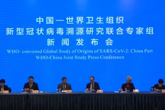 The WHO press conferencein Wuhan.