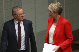 Opposition Leader Anthony Albanese and Sydney MP Tanya Plibersek in Parliament this year.