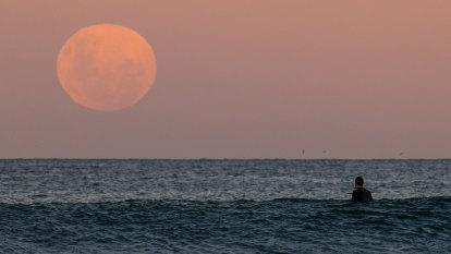 Moon's 'wobble' to give 'lunar assist' to coastal flooding: NASA