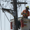 Sydney power outages could last to Sunday