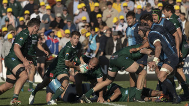 Randwick win a scrum against the Pumas at Coogee Oval.