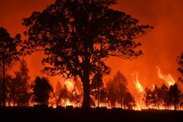 Australia is on fire and while we say we want climate action, we still won't vote for it