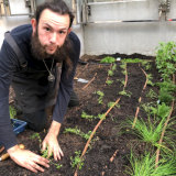Tristan Seal, pictured planting a Chef's Kitchen Garden at Brookfield Place in the Perth CBD, has been a GWR Employee since 2015 and was its first employee from Work For Dole. He was previously long-term unemployed.