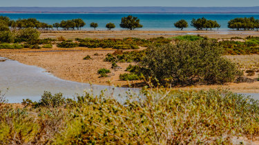 Exmouth Gulf will receive better protection under the plan.