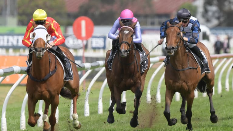 Off and gone: Miss Admiration shows a clean pair of heels in the JRA trophy.