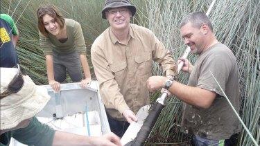 Researchers John Tibby, Lydia McKenzie, Jonathan Marshall and Cameron Barr take core samples from Duck Lagoon, North Stradbroke Island.