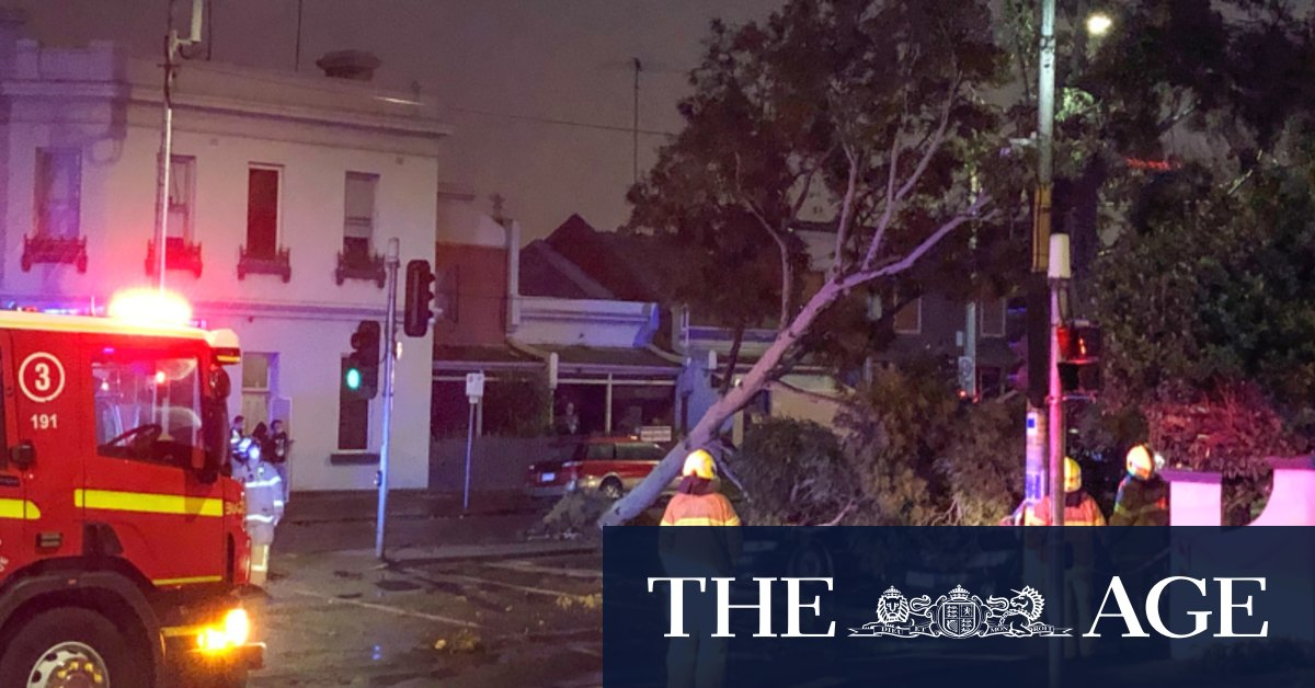 Wild weather: more than 130000 homes without power child hit by tree – The Age