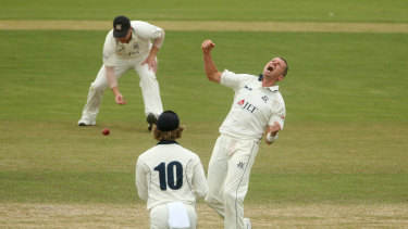 Victoria's Peter Siddle celebrates the dismissal of Moises Henriques on the day two of the Shield final against NSW.