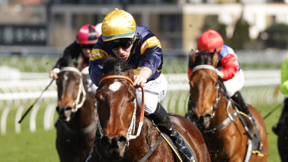 Masked Crusader slots in to The Everest before All Aged test