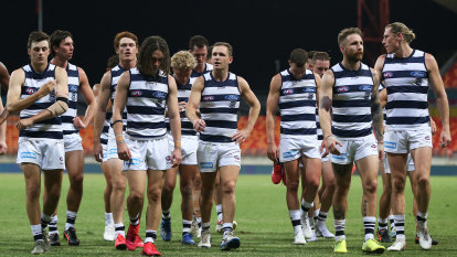 Work with us: Cats make plea to fans