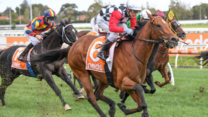 Mare banned for three months after Diamond Effort