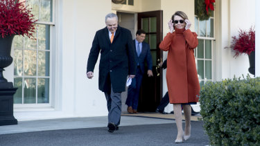 Pelosi in the Max Mara coat that sent waves around the world.