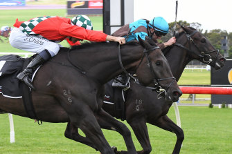 Racing suspended after someone tested positive to coronavirus at Sandown