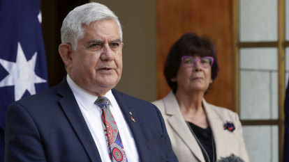 Minister defends design process for a Voice for Indigenous Australians