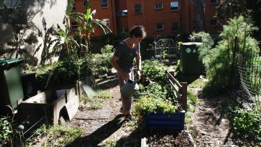 Convener Julie Moffat waters the Erskineville community garden, which may be replaced by affordable housing.