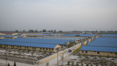 Sun Dawu's pig farm in Hebei Province, China.