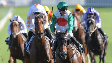 Top shelf: Josh Parr yells in delight after winning the Champagne Stakes on Castelvecchio.