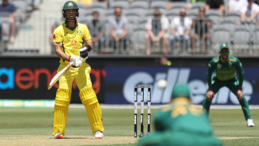 Spooned up: Glenn Maxwell looks on after delivering an easy catch to Heinrich Klaasen of South Africa.