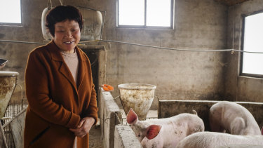 He Shuxia, a farmer who lost some pigs earlier this year to what looked like African swine fever, in Hejiage, China.