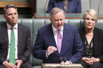 Opposition Leader Anthony Albanese delivers the budget reply.