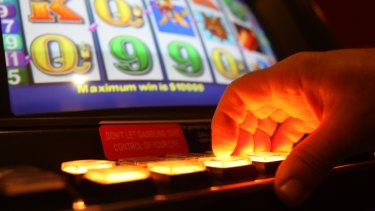 Northern Beaches Council has become the second municipality to adopt a harm minimisation policy on gambling.