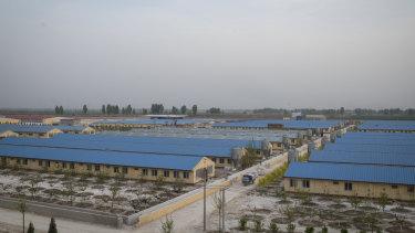 Sun Dawu's pig farm in Hebei Province, China.