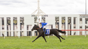 Jason Collett and Pin Sec cruised to victory in the Black Opal Stakes.