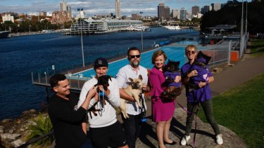 Pooch pool party people. From left to right:  Sam Nolan, Colin Crowley with Rupert (dog), Matt Baker with Pepa (dog), Councillor Linda Scott with Tumshee (dog) and Nicola O'Hanlon with Towskey (dog).