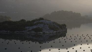 Plastic markers show oysters in Mali Ston Bay, on Croatia's Dalmatian coast.