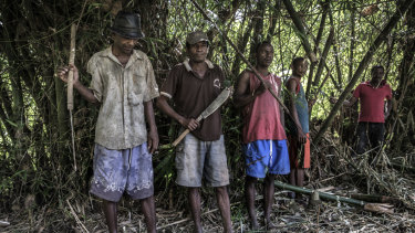 Men armed with fishing spears, clubs and machetes guard a vanilla plantation in Madagascar's north-eastern Sava region.