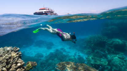 More travel voucher schemes could be rolled out to help Qld tourism industry