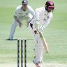 Khawaja gives knee green light as Queensland beat Vics