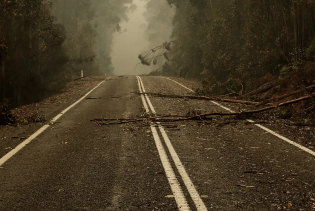 Large sections of the Princes Highway in East Gippsland have been cut off by the bushfires.