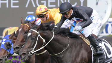 Corey Brown rides Fasika to victory in the South Pacific Classic during The Championships at Randwick in April.