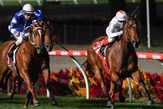 Jockey Craig Williams steers Loving Gaby to victory in the William Reid Stakes at Moonee Valley.