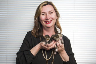 "RSPCA ACT chief executive officer Michelle Robertson with kittens that will be recognised as ""sentient beings""."